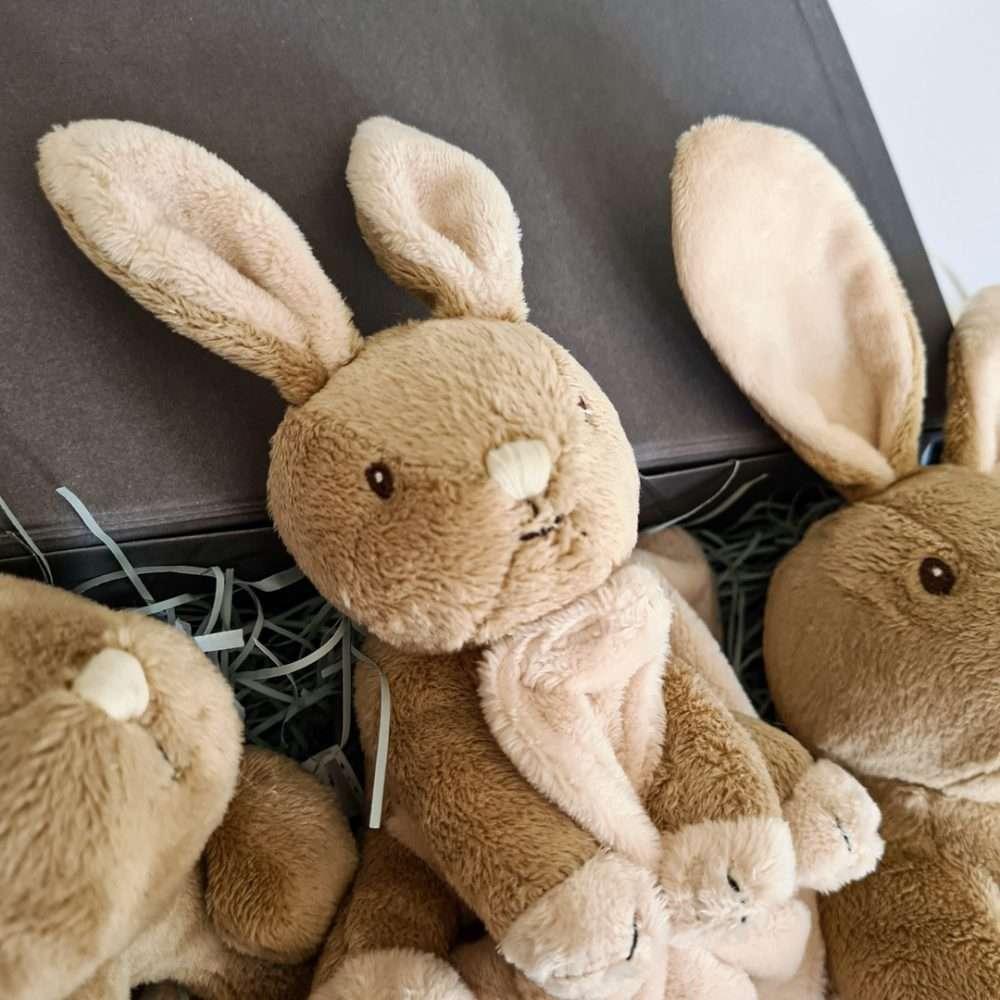 Bunny Rabbit Baby Hamper